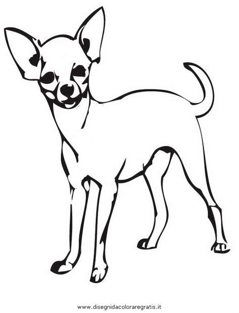 chiwawa puppies coloring pages 10 best hundefarger images on pinterest chihuahuas