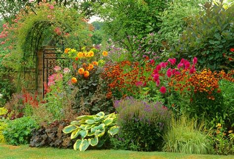 hot summer border idea  dahlias helenium  easy
