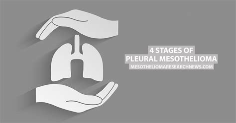 Pleural Mesothelioma Stages by 4 Stages Of Pleural Mesothelioma Mesothelioma Research News