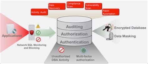 Database Security oracle database security services