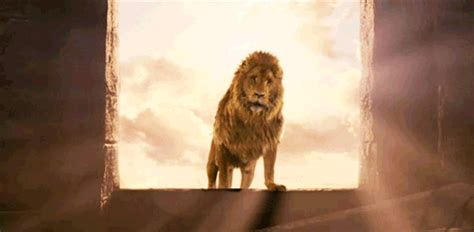 film lion rugit bringing out the lion in you guarding the heart blog