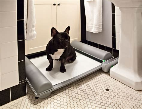 indoor bathroom for dogs brilliantpad the world s first self cleaning indoor dog