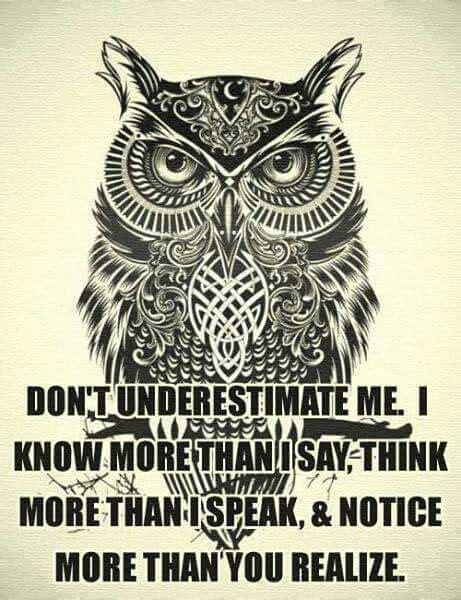 owl tattoo sayings best 25 owl quotes ideas on pinterest owls spirit