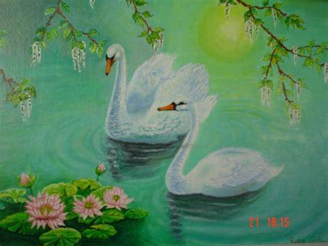 cuadros de cisnes cisnes rosa costa artelista
