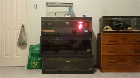Cheap Reptile Racks For Sale by 3 Large River Bend Reptile Cages For Sale