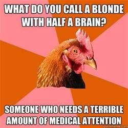Is Stevie Wonder Still Blind Anti Joke Chicken Meme 20 Pics