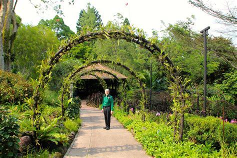 National Botanical Gardens Meijer Gardens Singapore National Botanic Gardens Singapore National Orchid Garden Pictures