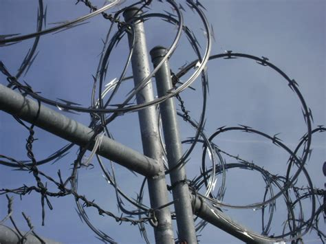 wire pictures barbed wire wiki
