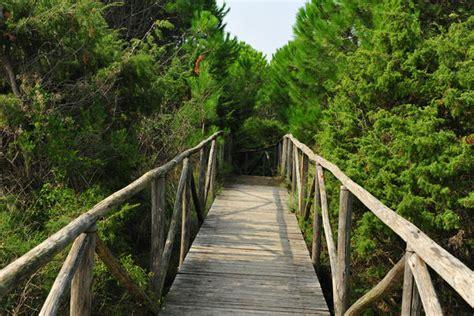 porto caleri rosolina giardino botanico litoraneo di porto caleri a rosolina