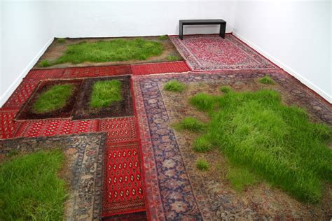 grown green rugs martin roth makes indoor lawns by growing real grass on aging rugs inhabitat green