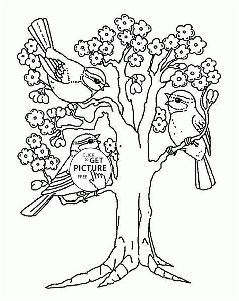 spring blooming tree coloring page  kids seasons