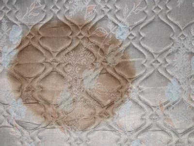 Water Stain On Mattress by How To Get Rid Of Mattress Stains