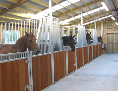 Horse Barn Tack Room Ideas American Barns Elite Range Equestrian Buildings Uk