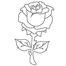 small rose coloring page coloring pages of rose buds coloring page