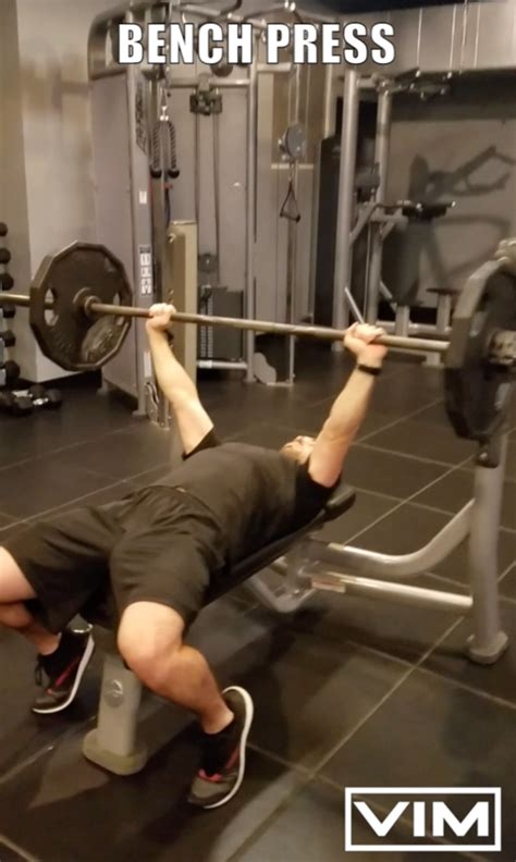 bench press with free weights free weights functional movement series bench press