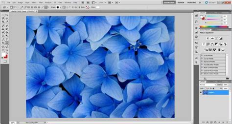 put pattern into shape photoshop how to insert image within shapes in photoshop