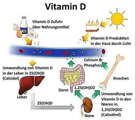 vitamin d mangel erkennen heimtest schnelltests