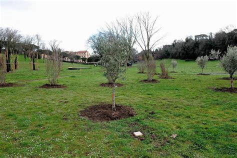 il giardino roma gariwo la foresta dei giusti gt giardino di roma nel