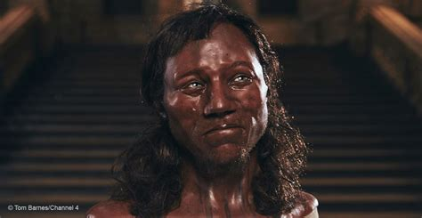 Barnes Museum Hours Cheddar Man Mesolithic Britain S Blue Eyed Boy Natural