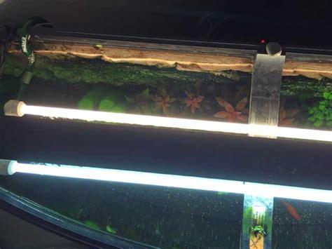 beleuchtung aquarium aquarium beleuchtung welche m 246 glichkeiten gibt es