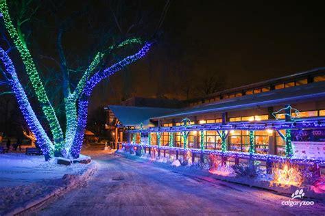 calgary zoo lights events calgary