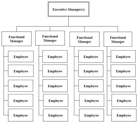 Best Photos Of Functional Organizational Structure Functional Organizational Structure Functional Organizational Chart Template