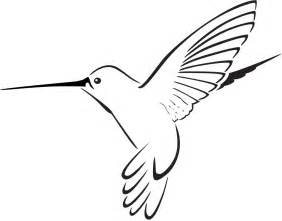 Hummingbird Drawing Best Images Collections Hd » Home Design 2017