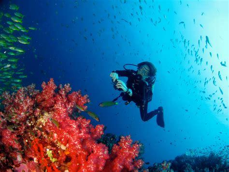 best dive spots top 5 diving spots in thailand