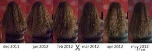month by month hair growth pictures month by month hair growth pictures