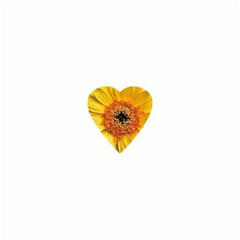 imagenes d flores animadas 20 im 225 genes animadas de flores hermosas margaritas