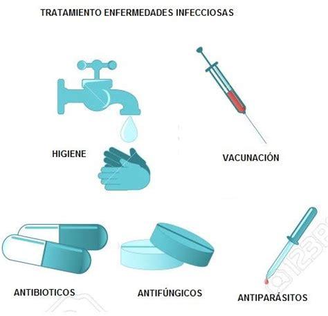 imagenes artisticas quienes las producen enfermedades infecciosas qu 233 son transmisi 243 n sintomas
