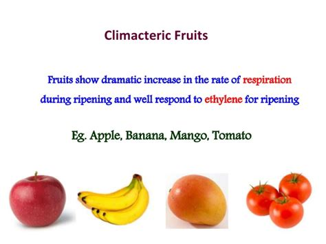 fruit ripening fruit ripening
