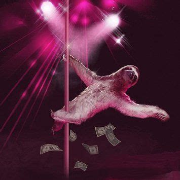 stripper sloth shower curtain 32 best xmas images on pinterest christ dads and