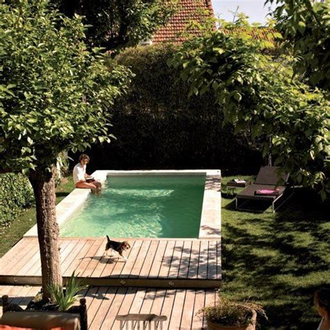 the backyard place 15 unique small backyard pools for in the sun