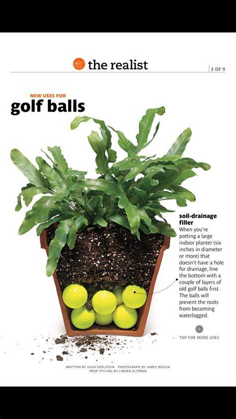 golf balls  soul drainage filler  indoor potted plants