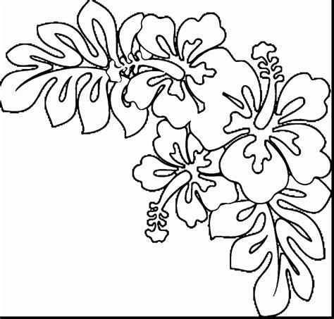 rose border coloring page 84 coloring pages flower borders rose