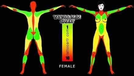 tattoo body map pain female tattoo pain chart tattoo female pinterest