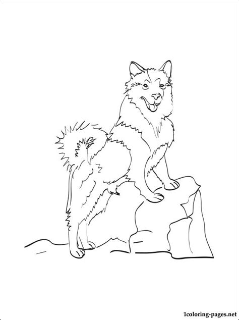 sheep dog coloring page icelandic sheepdog coloring page coloring pages