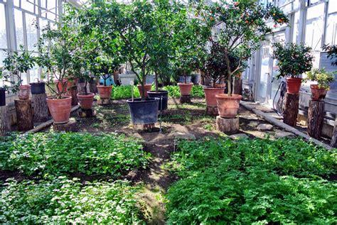 greenhouse vegetable garden garden ftempo