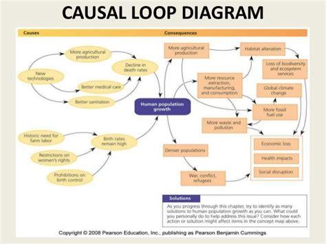 causal loop diagram demography