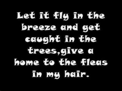 hair of the lyrics hair song hair lyrics