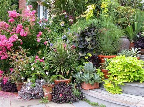 container gardening uk how not to kill plants in containers 13 most important