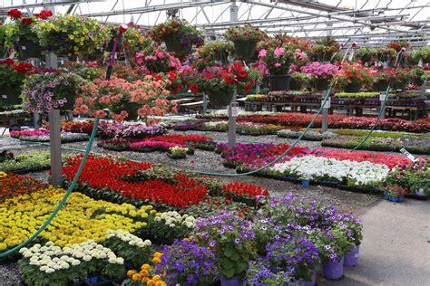 Garden Center Greenville Sc Country Boy S Home Garden Center Greenville South