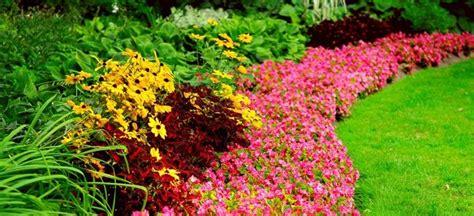 aiuole giardino fai da te come creare bellissime aiuole fiorite in giardino