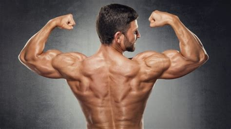 back tattoo exercise the best upper body exercise to build a perfect back