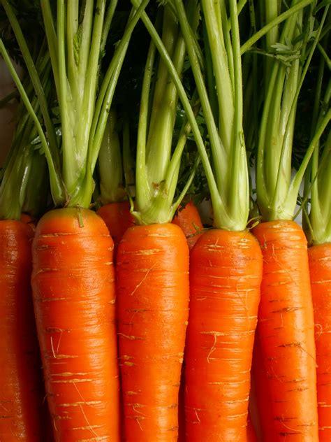 alimenti ricchi di fruttosio fruttosio l eccesso pu 242 portare a sindrome metabolica