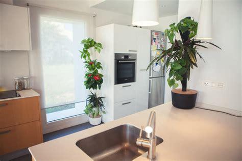 modular vertical garden citysens a modular vertical garden for dwellers