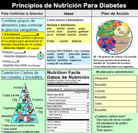 meal pattern in spanish medi diets products diet consult pro