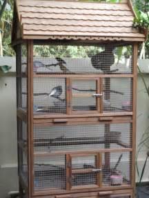 Attic Floor Plan my bird condo