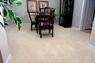 best floor color to hide dirt empire today blog
